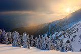 Winter in the Carpathian mountains