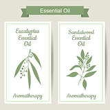 Set of 2 labels with Eucalyptus and sandalwood