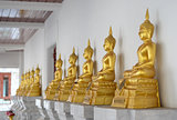 Row of golden buddha statue