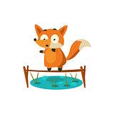 Fox Crossing The Pond