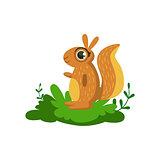 Squirrel Friendly Forest Animal