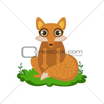 Fox Friendly Forest Animal