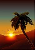 Palm tree on tropical island. Night romantic landscape