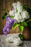 Still-life with a bouquet of lilac