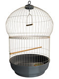 3D rendering of a birdcage