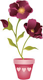 Spring flower in Vase
