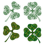 Clover Plants with Floral Pattern