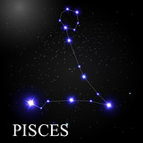 Pisces Zodiac Sign with Beautiful Bright Stars on the Background