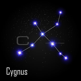 Cygnus Constellation with Beautiful Bright Stars on the Backgrou