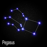 Pegasus Constellation with Beautiful Bright Stars on the Backgro