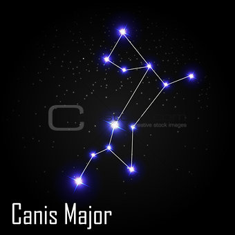 Canis Major Constellation with Beautiful Bright Stars on the Bac
