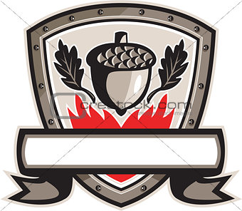 Acorn Oak Leaf Flames Shield Retro