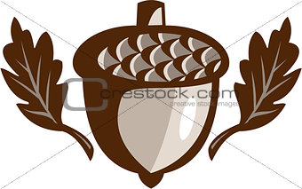 Acorn Oak Leaf Isolated Retro