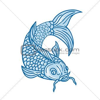 Koi Nishikigoi Carp Fish Diving Down Drawing