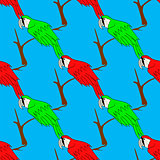 Big Red and Green Parrot Isolated. Bird Pattern