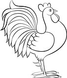 drawing of rooster or cock vector sketch