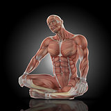 3D render of a medical figure with muscle map doing neck stretch