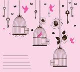 doves free flower