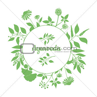 Green round frame with collection of plants. Silhouette of branches isolated on white background