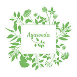 Green square frame with collection of ayurveda plants. Silhouette of branches isolated on white background