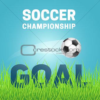 Football in green grass.