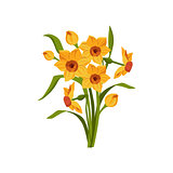 Daffodil Hand Drawn Realistic Illustration
