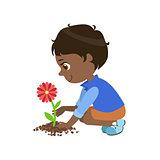 Boy Planting A Flower