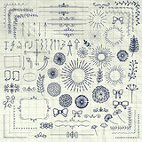 Vector Pen Drawing Floral Rustic Design Elements