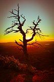 Sunset in Mesa Verde.