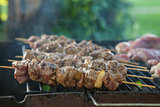 Tasty skewers on the grill, close-up.