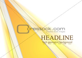 Bright stripes vector corporate design