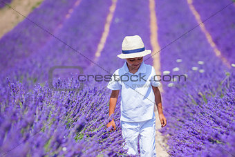 Boy in lavender summer field