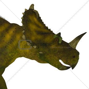Centrosaurus Dinosaur Head