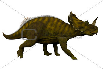 Centrosaurus Side Profile