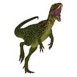 Masiakasaurus Dinosaur on White