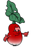 Fresh Cartoon Radish