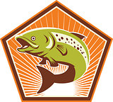 Trout Fish Jumping Retro