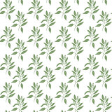 Seamless pattern green leaves of sandalwood