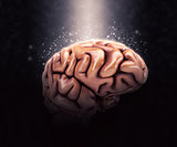 3D human brain on dramatic background