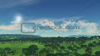 3D render of tree landscape