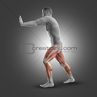3D male figure in standing gastroc-nemius stretch