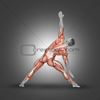 3D male figure in triangle pose