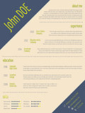 Simplistic modern resume cv template