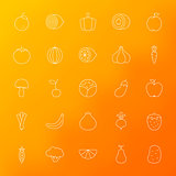 Fruit Vegetable Line Icons Set Blurred