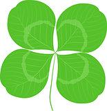 Quatrefoil leaf clover sign icon. Good Luck or Saint patrick day symbol. Ecology image concept