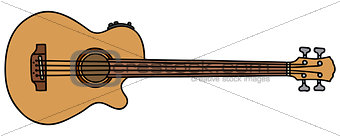 Acoustic fretless bass guitar