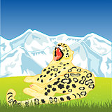 Snow leopard on nature