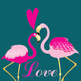 love birds flamingos