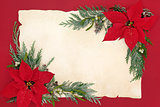 Poinsettia Flower Background Border
