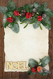 Decorative Floral Noel Border
